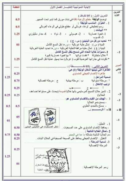 اختبارات الفصل الأول في مادة العلوم الطبيعية السنة الأولى ثانوي علمي مع الحل - الموضوع 04