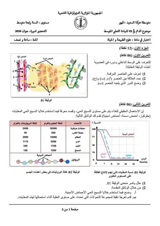 اختبارات الفصل الأول في مادة العلوم الطبيعية السنة الرابعة متوسط مع الحل - الموضوع 13