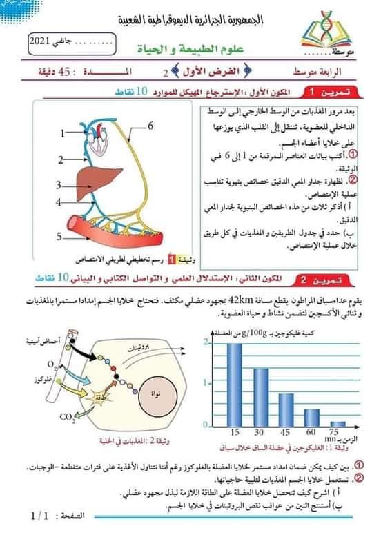 اختبارات الفصل الأول في مادة العلوم الطبيعية السنة الرابعة متوسط مع الحل - الموضوع 14