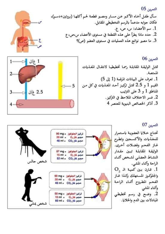 اختبارات الفصل الأول في مادة العلوم الطبيعية السنة الرابعة متوسط مع الحل - الموضوع 06