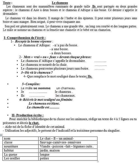 Dz Examen موقع تلاميذ الجزائر